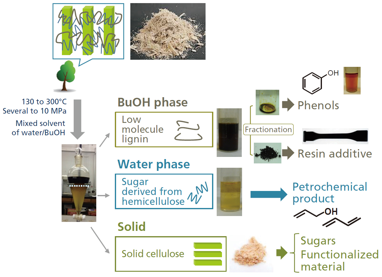 Highly Efficient Production Process for Biomass-Based