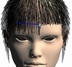 Hair Style Simulator Prepossessing Hair Cut Simulation  Projects
