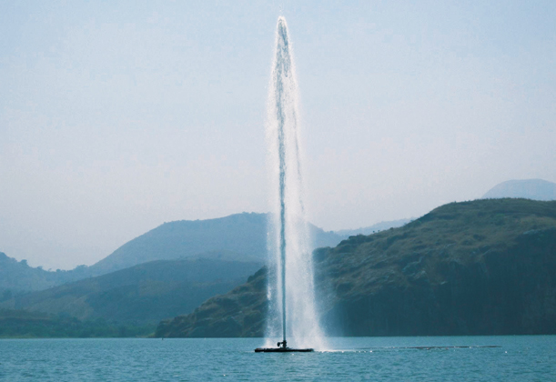 Magmatic Fluid Supply Into Lakes Nyos And Monoun And
