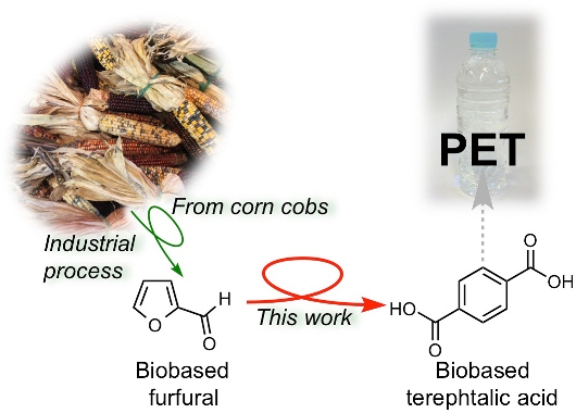 Successful development of a synthetic route for the production of the monomer used commodity plastics PET from the inedible cellulosic biomass.