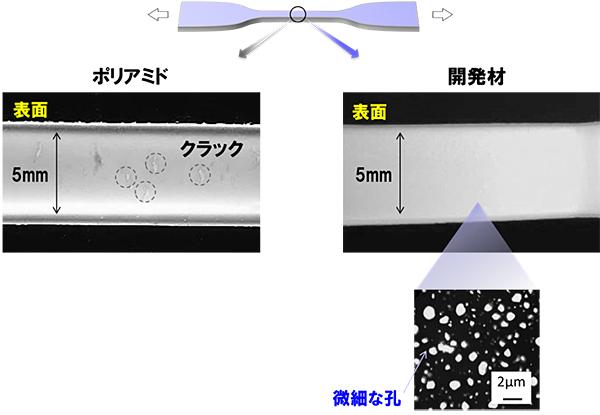 共同発表:環動ポリマー構造を ...