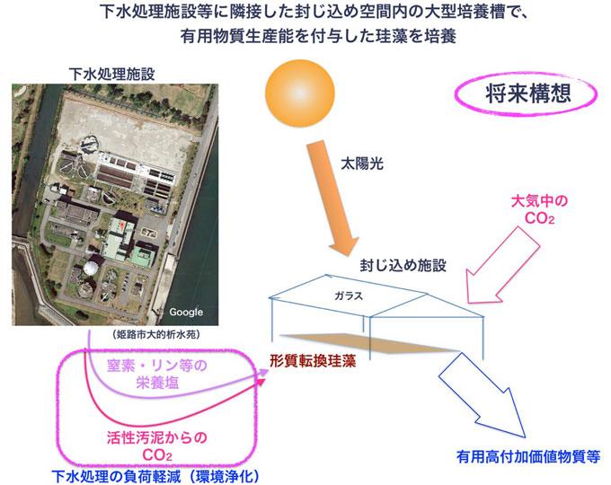 図3 下水処理場と共存する培養システムの将来構想