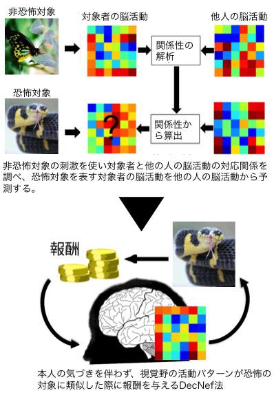 図2 DecNef法の概要