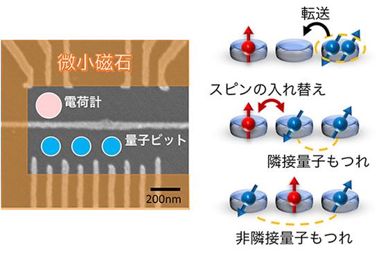 図1 3量子ビットを擁する半導体量子ドット試料(左)と量子もつれ生成メカニズム(右)