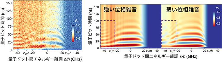 図3 量子もつれ状態コヒーレント振動の測定結果(左)と数値シミュレーション(右)