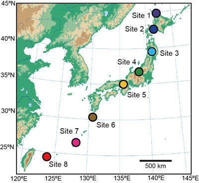 図2 調査地点