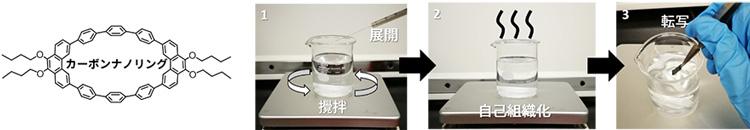 図2 本研究で用いたカーボンナノリングの化学構造と分子薄膜の作製方法