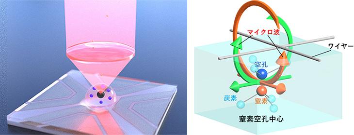図1 ダイヤモンド中の窒素空孔中心(NV中心)と偏光マイクロ波による 幾何学量子ビット制御の概略図