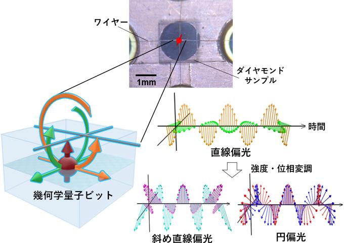 図3 サンプル表面の構造および偏光マイクロ波の概要
