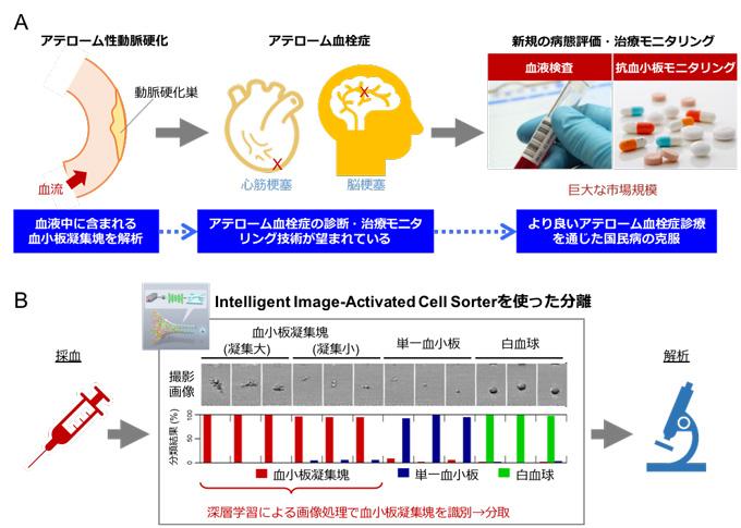 図4 血液細胞を用いた本技術の医学への展開