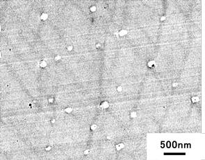 図4 大変形後の透過型電子顕微鏡観察結果