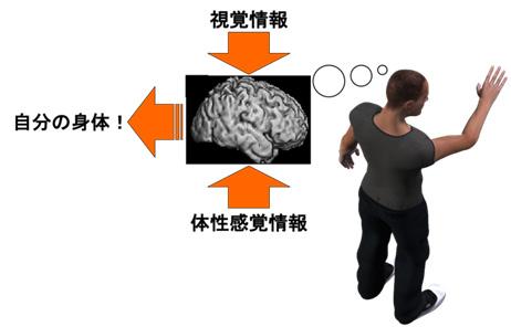 図1 自己身体の気づき