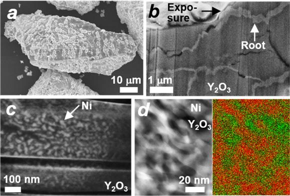 図3 根留触媒Ni#Y2O3のミクロ構造とナノ相分離構造
