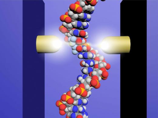 1分子量子シークエンサーの原理図