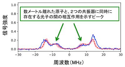 図3 数メートル離れた原子と、2つの共振器に同時に存在する光子の間の相互作用を示す実験結果