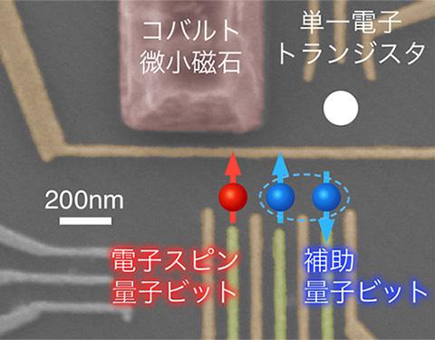 図2 三重量子ドット構造による電子スピン量子ビットのハイブリッドデバイス