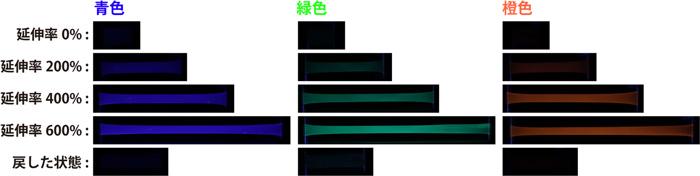 図4 それぞれのメカノフォアを導入したフィルムの機械的刺激に対する応答性