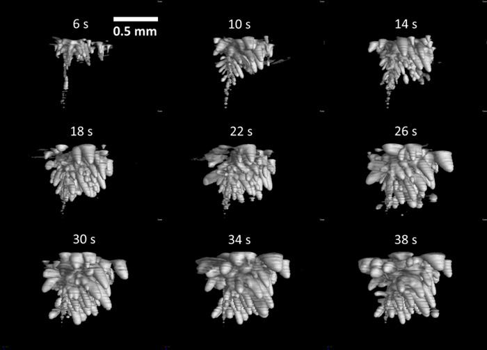 図5 アクリルの撮影結果(図4)における発泡部位の三次元表示