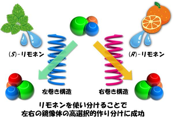 図3 リモネンによる左右らせん構造の誘起と高選択的不斉触媒としての応用