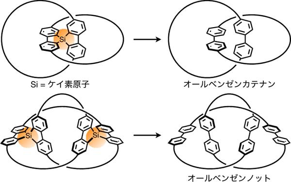図3 オールベンゼンカテナン(上)およびノット(下)の合成戦略(概要)