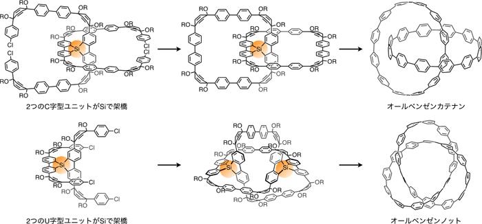 図4 オールベンゼンカテナン(上)およびノット(下)の合成経路(詳細)