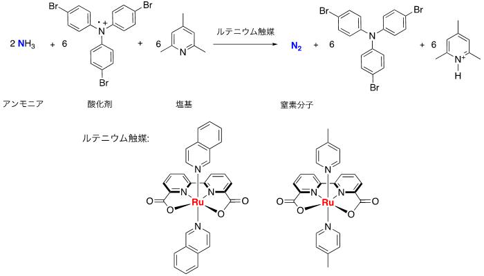 図2 ルテニウム触媒によるアンモニアの酸化反応