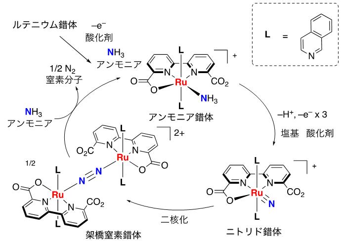 図3 想定している反応機構