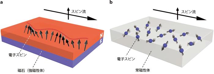 図1 強磁性体(a)と常磁性体(b)におけるスピン流伝播のイメージ図