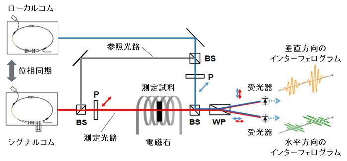 図2 デュアルコム分光法を用いたファラデー効果測定装置のブロック図
