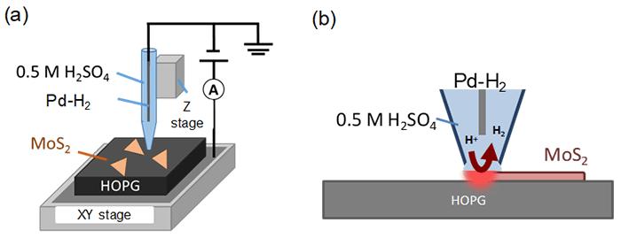 図1 SECCMによるMoS2ナノシート計測の概要
