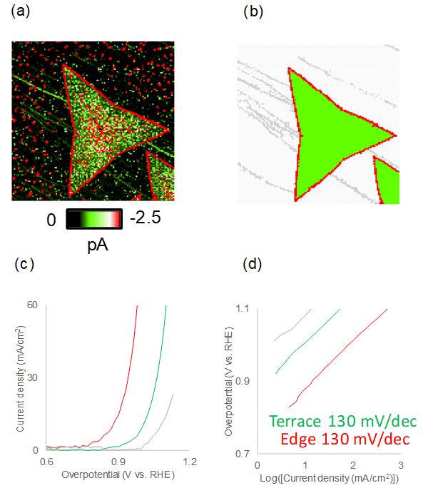 図2 SECCMを用いたMoS2ナノシートの電気化学イメージング