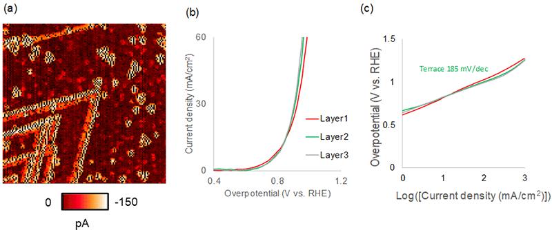 図5 MoS2/WS2ヘテロナノシートのHER活性と層数の関係