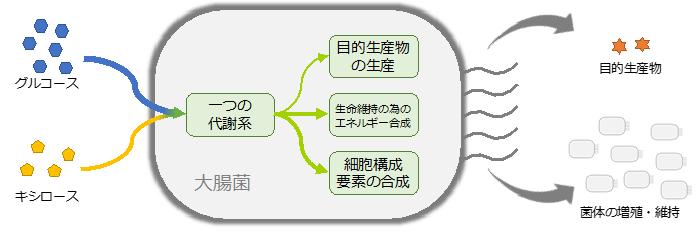 図2 通常の大腸菌を用いたモノづくり