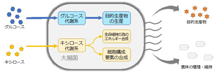図3 PMPE大腸菌を用いたモノづく