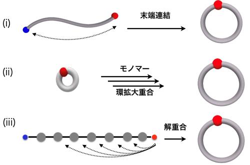 図 環状分子(環状高分子を含む)の合成法