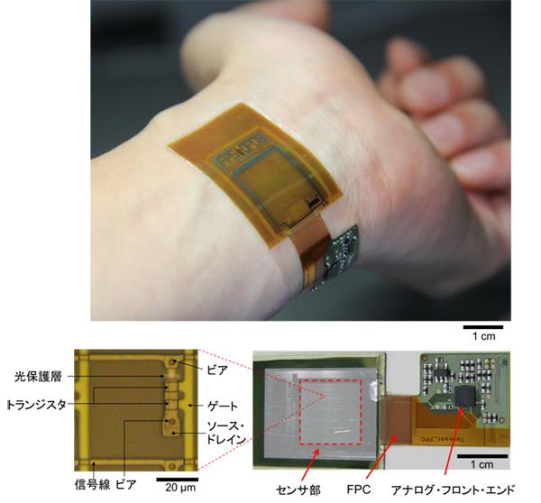 図1 開発したシート型イメージセンサーのデバイス写真