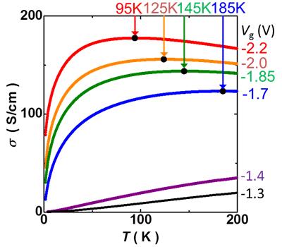 図4 電気伝導率(σ)の温度依存性