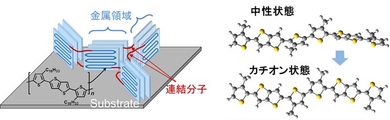 図5 高分子薄膜の構造模式図と理論計算された分子構造