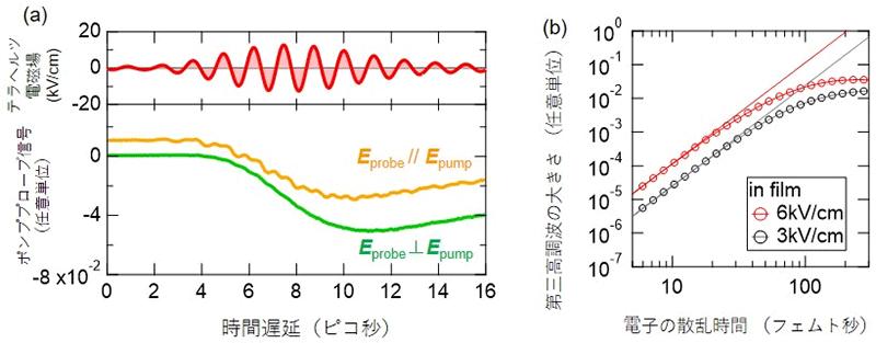 図3 ヒ化カドミウムにおける時間分解観測と理論計算