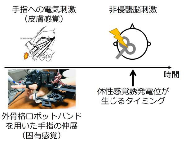 図2 実験方法
