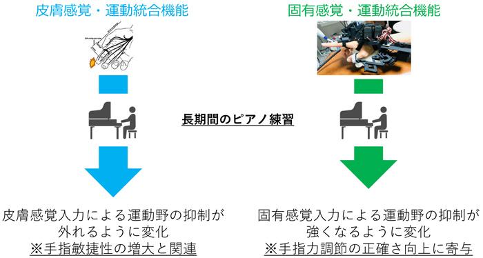 図3 本研究の成果