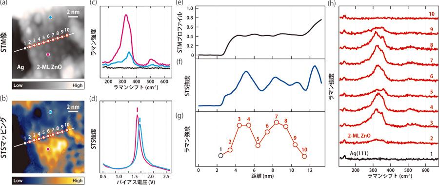 図3 共鳴TERSで空間分解能1ナノメートルを実現