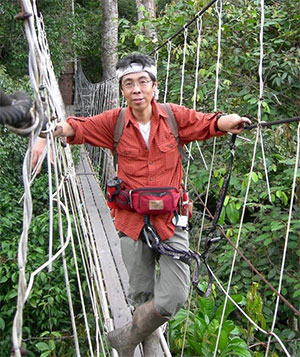 Dr. Hashimoto crossing the suspension bridge hanging between trees at 30 meters from the ground level.